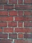 mur des cons 1