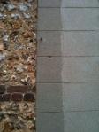 mur des cons 3