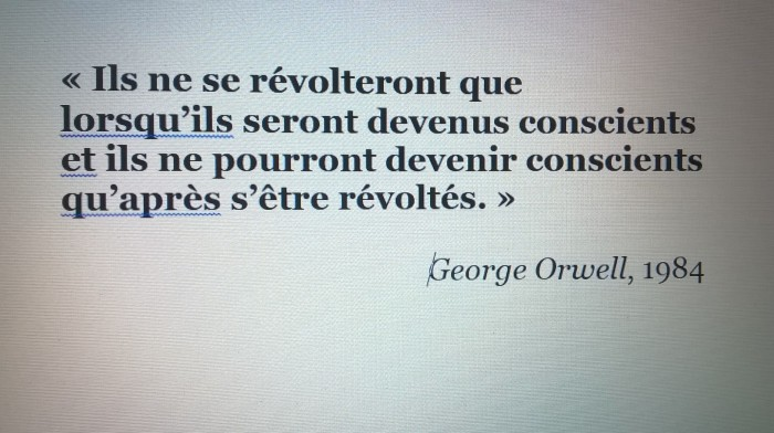 citation George Orwell 1984 révolte