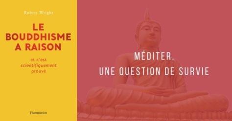 Robert Wright, Le Bouddhisme a raison et c'est scientifiquement prouvé, méditation pleine conscience, psychologie évolutionniste