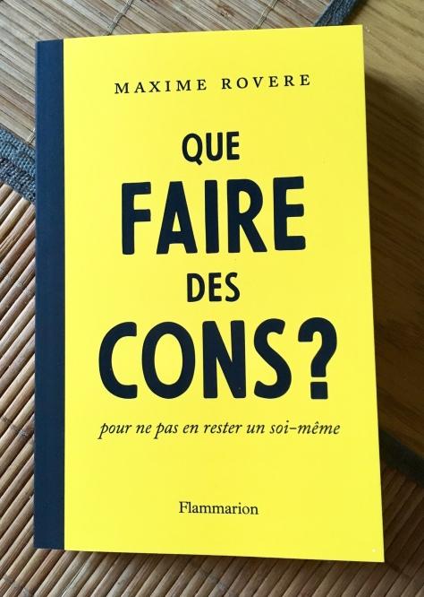 Que faire des cons ? Maxime Rovere Flammarion